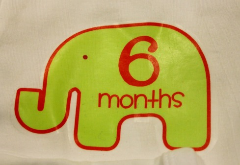 Baby Age by Month Elephant Onsies